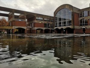 What's going on with Falmer Moat?
